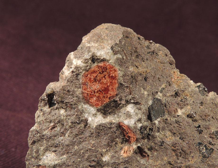 Biotit