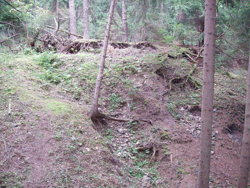 Dědova hora u Komárova, Czech Republic